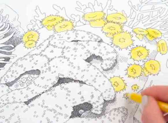 Crayola Color Escapes Coloring Pages