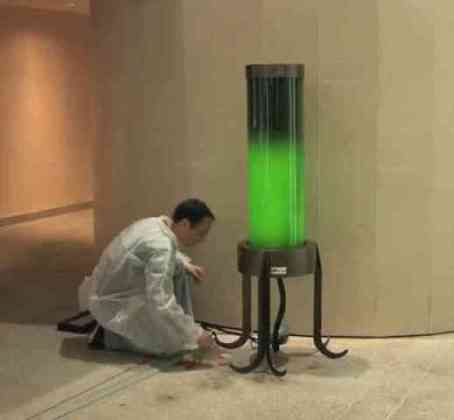 Algae Street Lamp (You Tube Image)