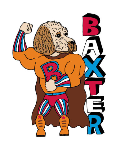 Baxter Superhero: by Pets Are Superheros