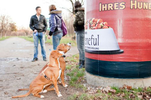 Beneful dog food advertises to your dog with the scent of dog food at dog nose level: image via theinspirationroom.com