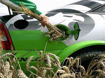 Biofuels may have more detrimental effects than global warming itself.