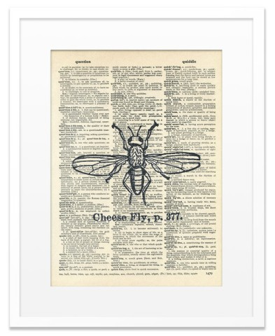 Cheese Fly Vintage Dictionary Art Print: by &quot;Memorydust&quot;