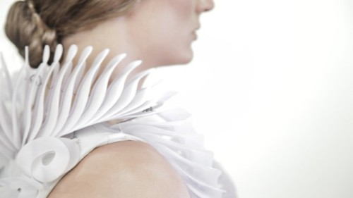 Ruff Collar- Side View: Source: Clausette