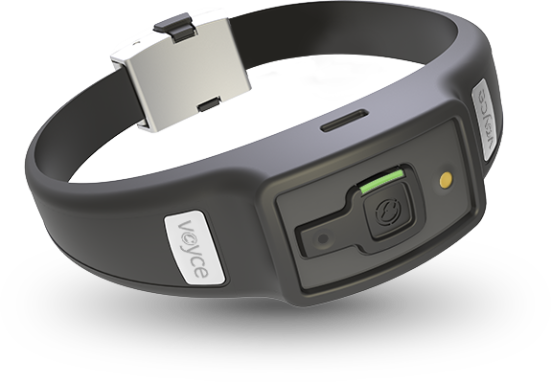 Voyce wearable fitness monitor for dogs: image via mydogsvoyce.com