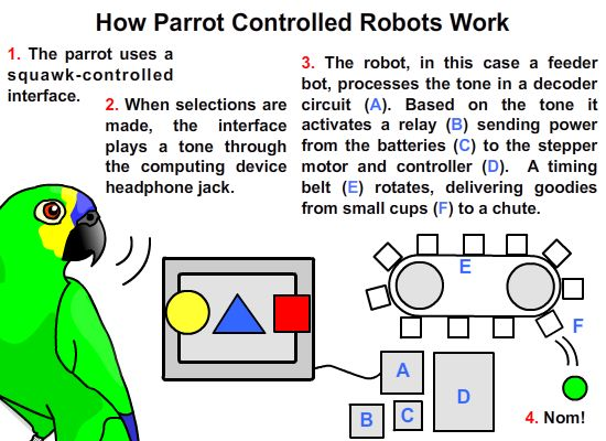 Computer gaming and robotic rewards for parrots: image via blog.ponoko.com