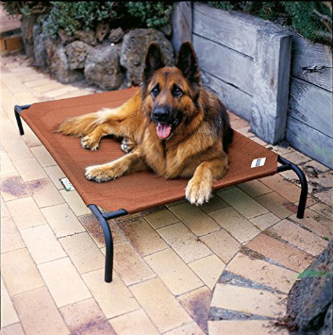 Coolaroo Portable Camp Bed for Dogs