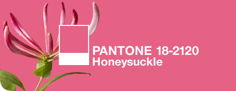 Pantone Color of the Year, 2011 - Honeysuckle: © Pantone