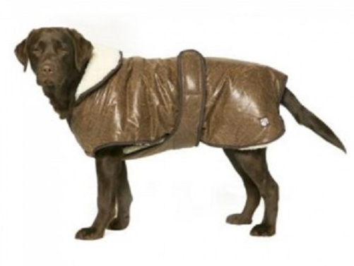 Brown Waggles Flying Dog Jacket