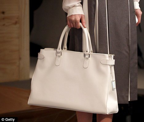 Rechargable Handbag: Source: DailyMail.com