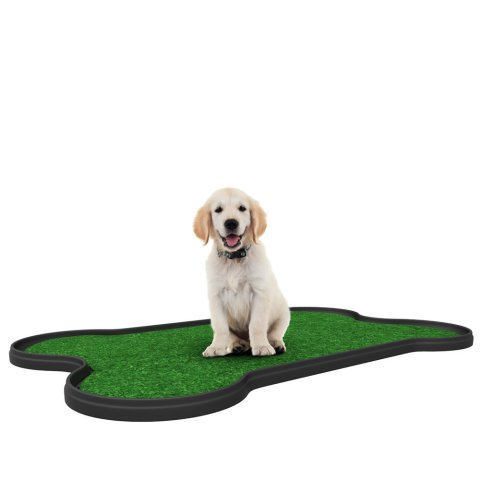 Dog Potty Patch