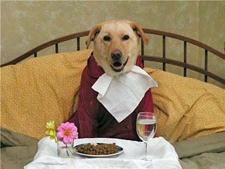 Now, this is food service!: image via myanimalcarecenter.com