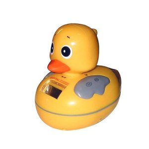 Radio Duck Thermometer