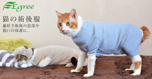 Egree loose post-surgery cat pajamas: image via japantrendshop.com