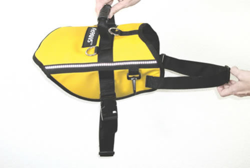 FitPAWS Safety Harness: ©Ball Dynamics via wizofpaws.net