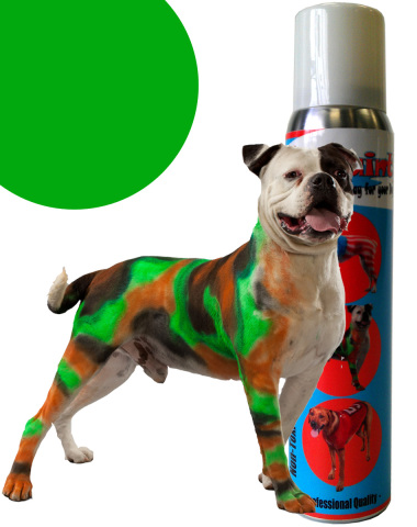 PetPaint colored pet hair spray: image via petpaint.com