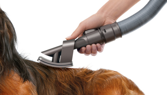 The Dyson Dog Grooming Brush: © Dyson