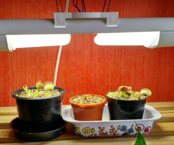 Grow Lights Optimize the Colors of Light Plants Use: Plants use photosynthesis to grow