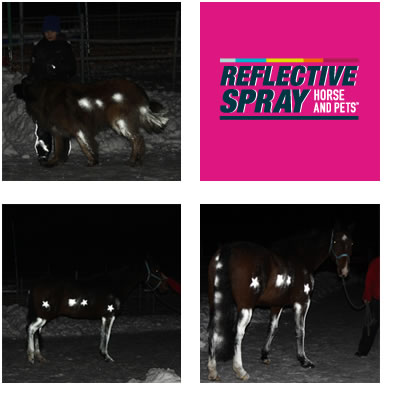Albeedo 100 Horse and Pets reflective spray: image via albeedo100.co.uk