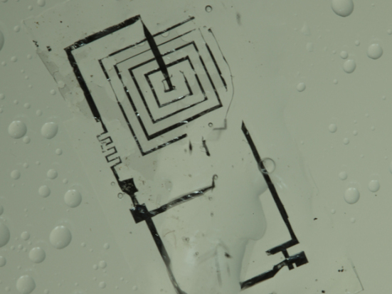 Dissolving electronics made of silicon, magnesium, and silk: image: The Beckman Institute, University of Illinois via npr.com