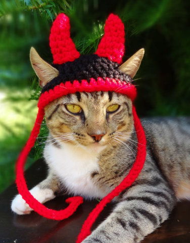 Little Devil Pet Costume for small dogs and cats: image via etsy.com/listing/157573294/