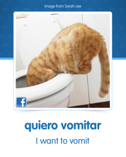 """Quiero vomitar"" CatAcademy Spanish learning screen: partial image via memrise.com"