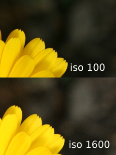 ISO Comparison with Canon EOS 400D