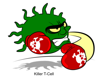 Killer T-cell: image via diabetesmine.com