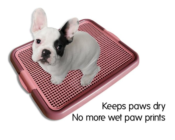 Klean Paws Indoor Potty