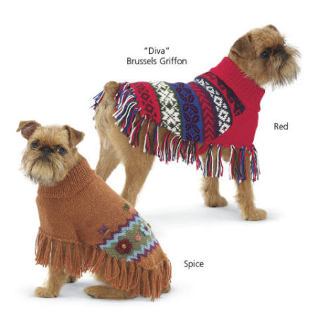Alpaca Dog Ponchos: image via inthecompanyofdogs.com