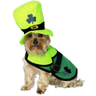 Most Adorable Dog Leprechaun Costume