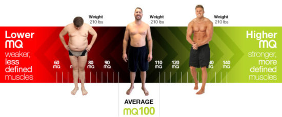 Muscle Quality