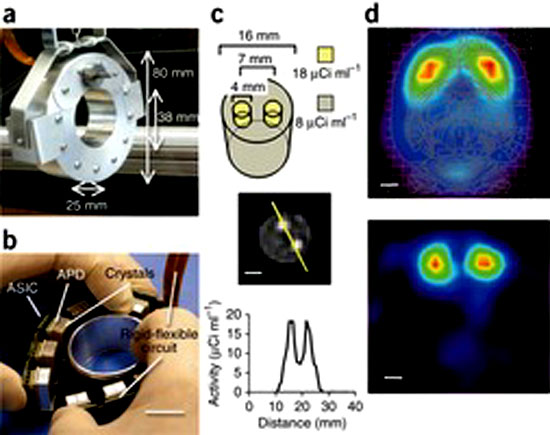 RatCAP device and brain images: image via nature.com