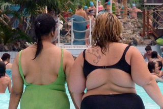 Gene KLF14 is the master switch that's regulating the fat....: image via ibnlive.in.com