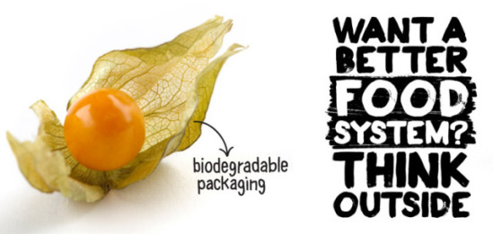 Leaves provide inspiration for biodegradable packaging: image via biomimicry.skipsolabs.com/