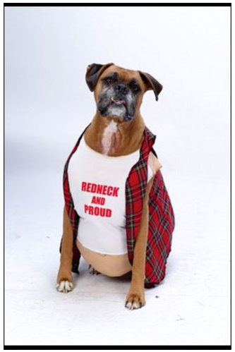 boxer dog halloween costume larry the cable guy