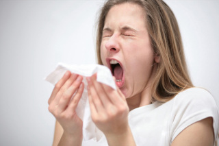 Mannose Receptors have been identified as the first point of contact for allergens: image via sheknows.com
