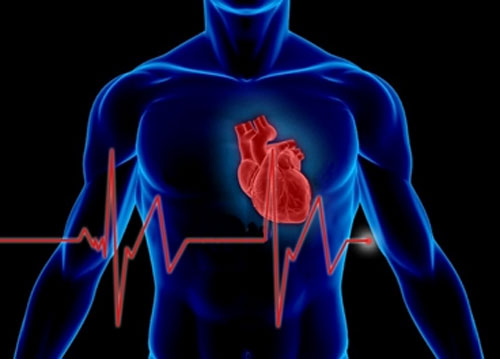Sensor is able to detect spikes in certain proteins after a heart attack.: Graphic by Christine Daniloff, image via mit.edu
