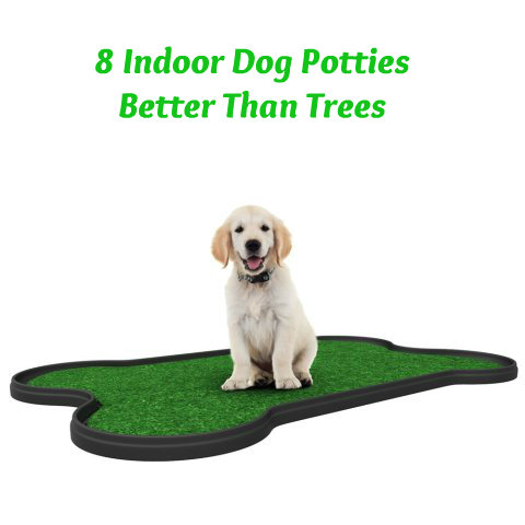 8 Dog Potties and Toilets That Are Better Than Trees
