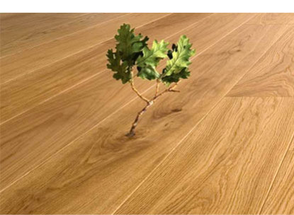 Eco-Friendly Floor Stains & Finishes