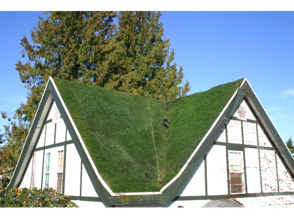 "A Truly ""Green"" Roof"