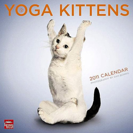 Yoga Kittens 2011 (Cat) Calendar