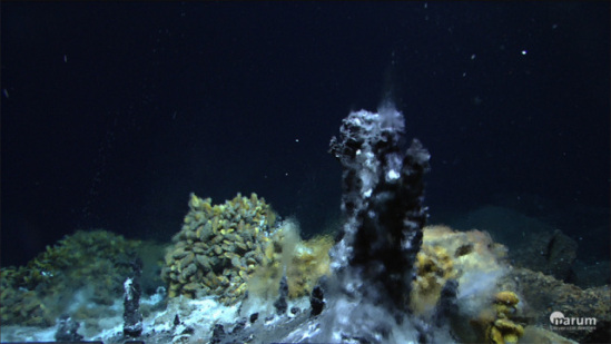 Hydrothermal vents spew hot minerals into the sea from newly formed crusts in the earth:  MARUM